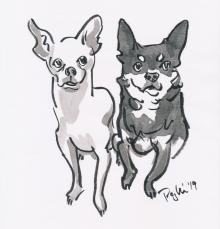 2-chihuahuas.jpg